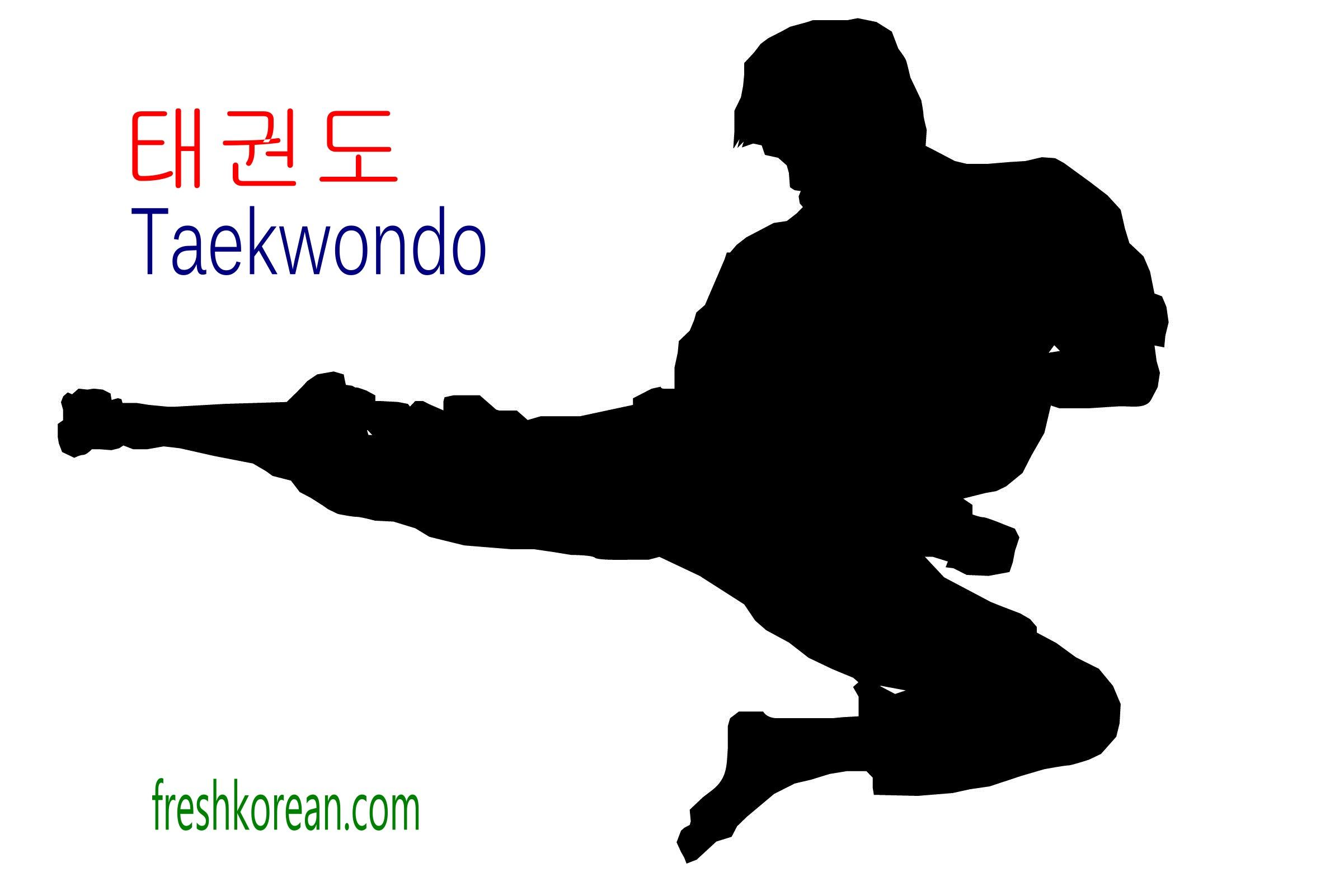 South Korean Taekwondo Team Goes Viral With Their Epic Martial Arts Skills