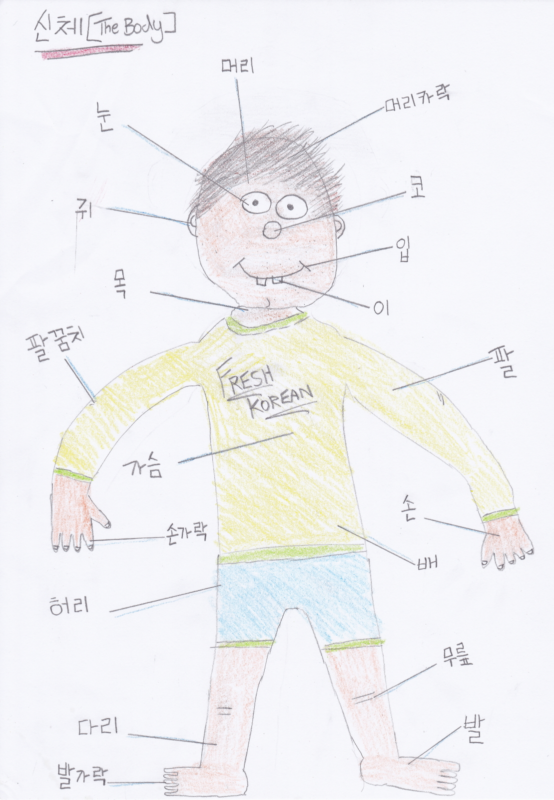 Parts Of The Body In Korean Vocabulary And Annotated Picture Fresh