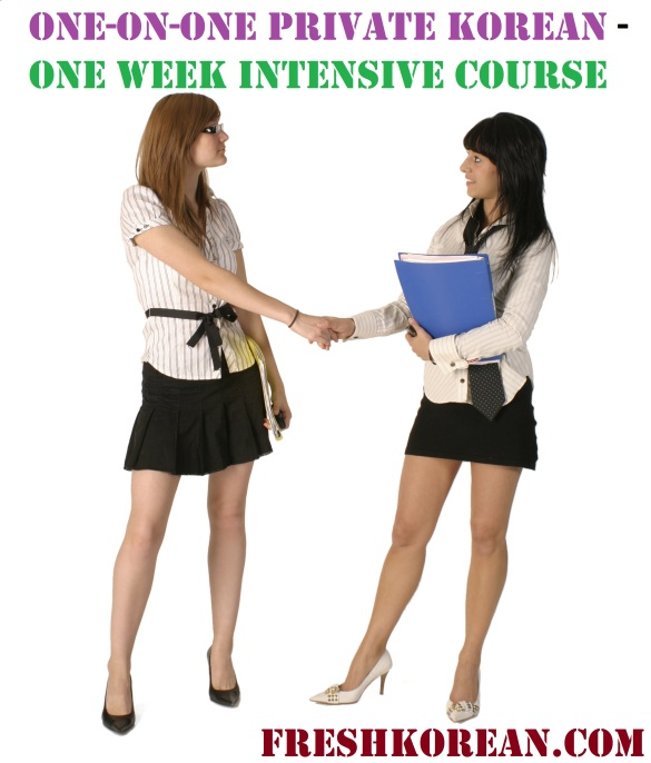 One-on-One Intensive Korean Course