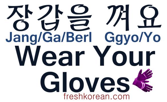 Wear Your Gloves - Fresh Korean