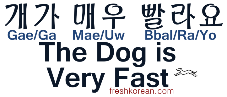 The Dog is Very Fast - Fresh Korean