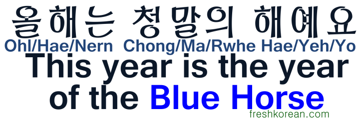 This is the year of the Blue Horse - Fresh Korean