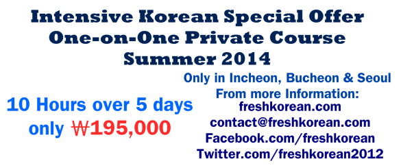 Intensive Korean Summer 2014 Incheon Seoul Bucheon