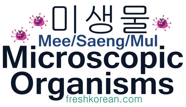 Microscopic Organisms - Fresh Korean Phrase Card