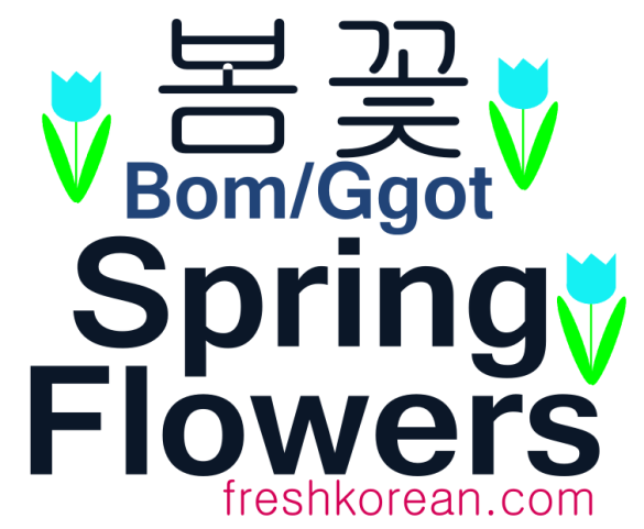 Spring Flowers - Fresh Korean Phrase Card