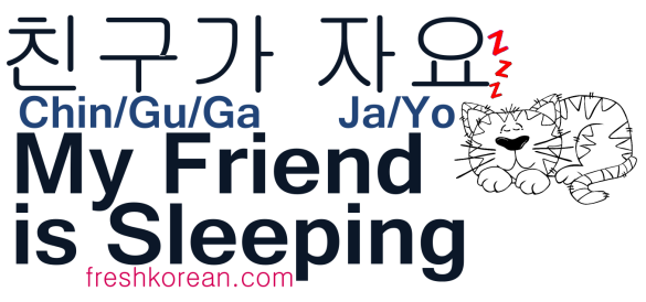 My Friend is Sleeping - Fresh Korean Phrase Card