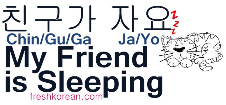 My Friend is Sleeping - Fresh Korean Phrase Card