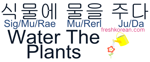 Water The Plants - Fresh Korean Phrase Card