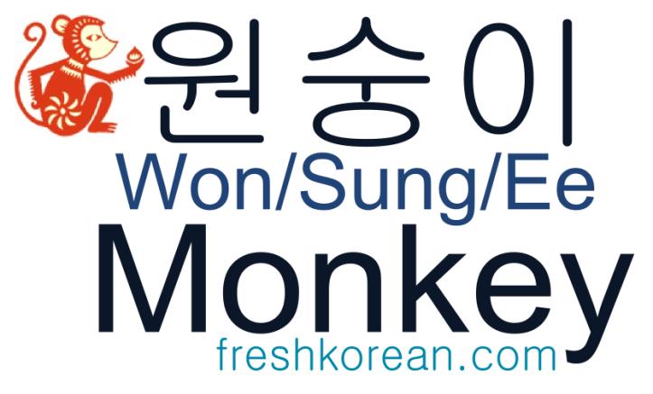 Monkey - Fresh Korean Phrase Card