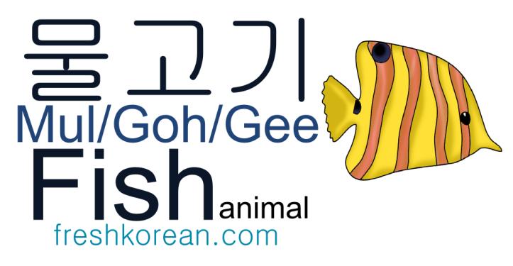 Fish animal - Fresh Korean Phrase Card