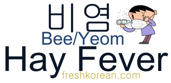 Hay Fever - Fresh Korean Phrase Card