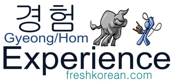 experience - Fresh Korean Phrase Card