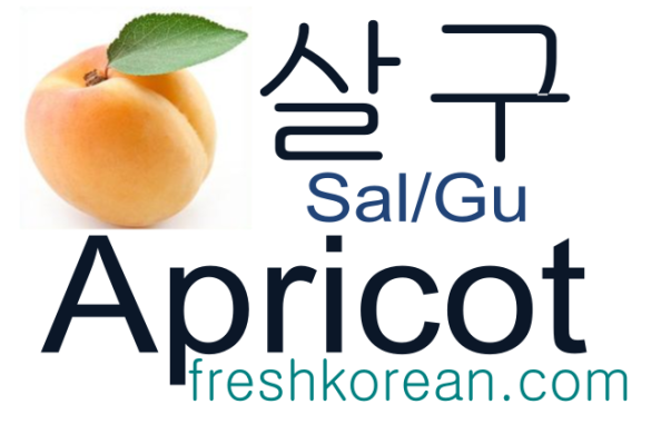 apricot - Fresh Korean Phrase