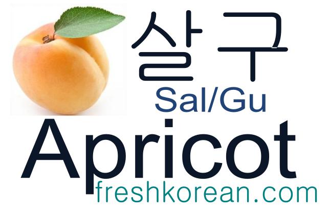 apricot - Fresh Korean Phrase