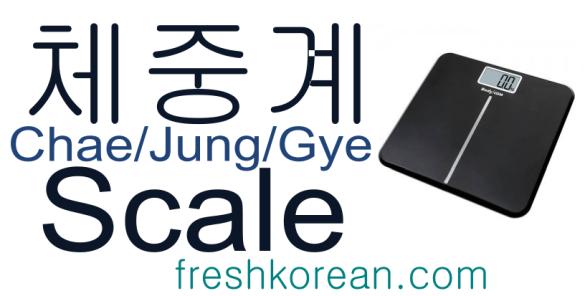 scale - Fresh Korean Phrase