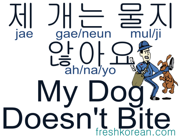 my dog doesn't bite - Fresh Korean Phrase