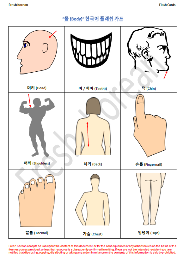 parts-of-the-body-in-korean-flashcards-2