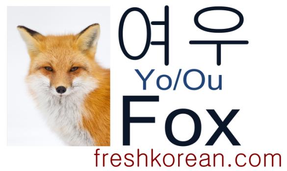 fox-fresh-korean-phrase