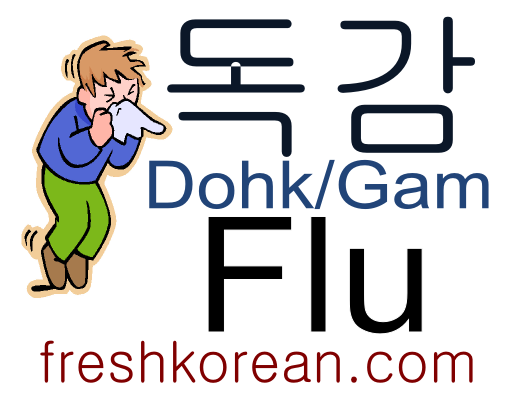 flu-fresh-korean-phrase