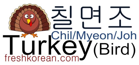 turkey-fresh-korean-phrase
