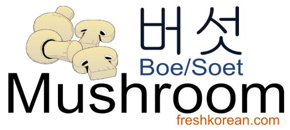 mushroom-fresh-korean-phrase