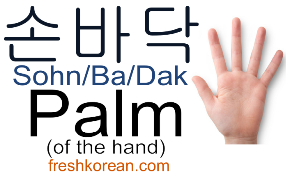 palm-of-the-hand-fresh-korean-phrase