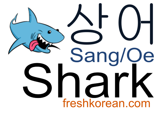 shark-fresh-korean-phrase