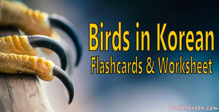 birds-in-korean-banner-fresh-korean