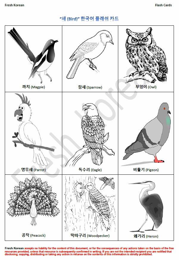 birds-in-korean-flashcards-page-1