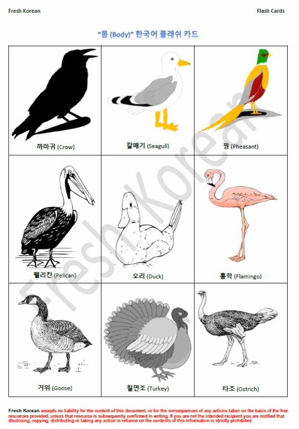 birds-in-korean-flashcards-page-2